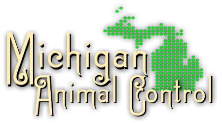 Michigan Animal Control & Wildlife Removal